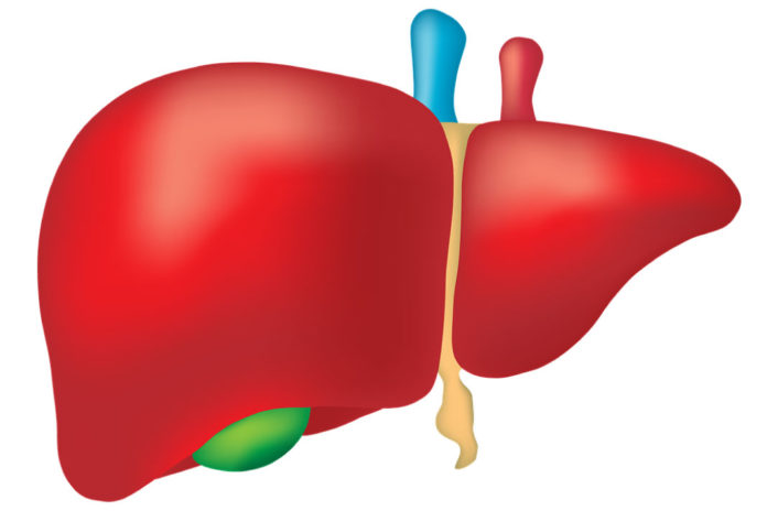 penyakit liver
