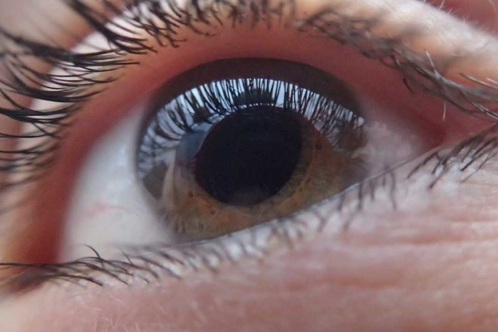 apa itu olahraga mata