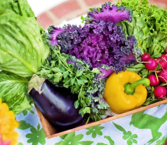 sayuran untuk manula