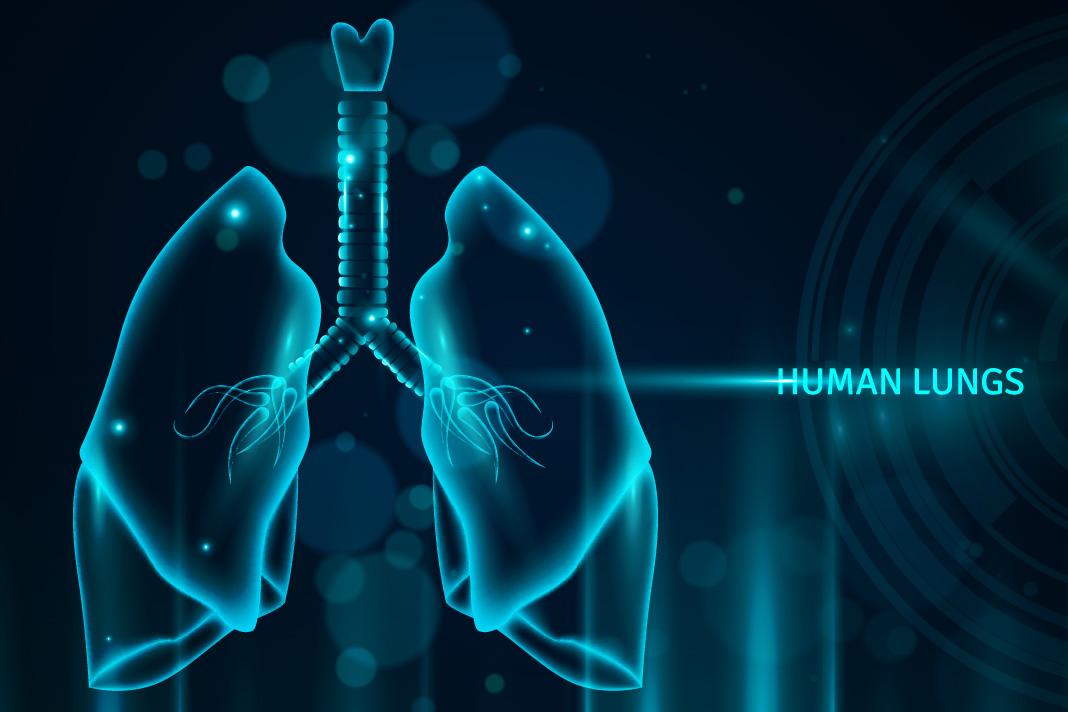 Memperingati Bulan Kesehatan Paru   GOLANSIA - Berita Kesehatan  Lansia/Manula Lanjut Usia